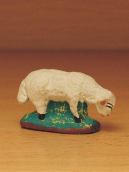 Mouton broutant